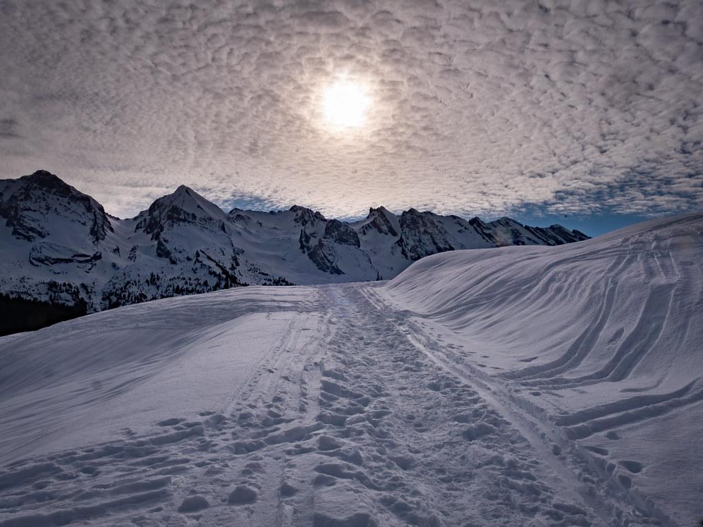 Soleil d'hiver... 49420099101_3b1b1d5293_b