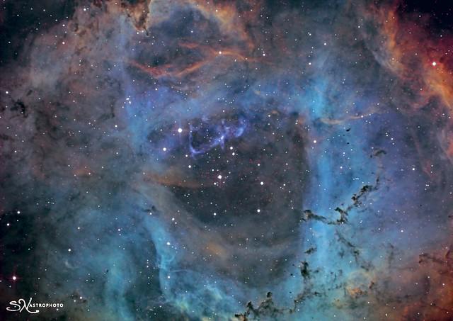Nébuleuse de la Rosette  NGC2239