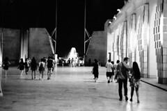 Night Creatures // TMax 400 at EI 1600 • FM3A // Valletta, 2019