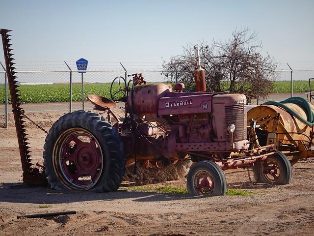 Farmall Tractor SR602083