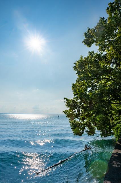 Sunshine at the sea