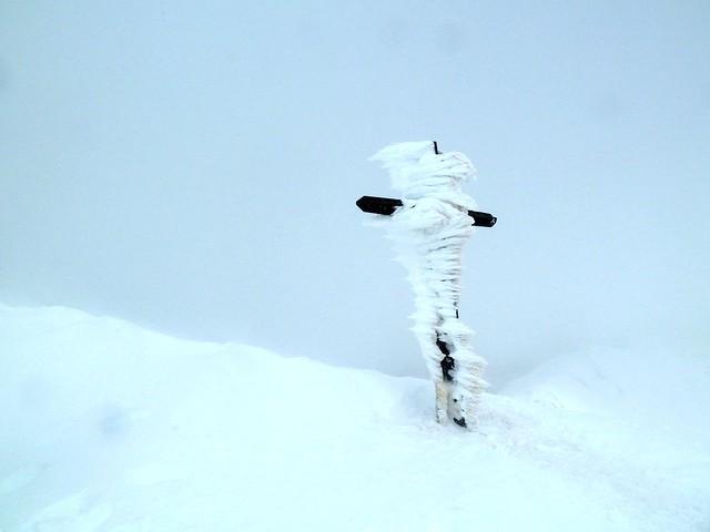 Temps de neu