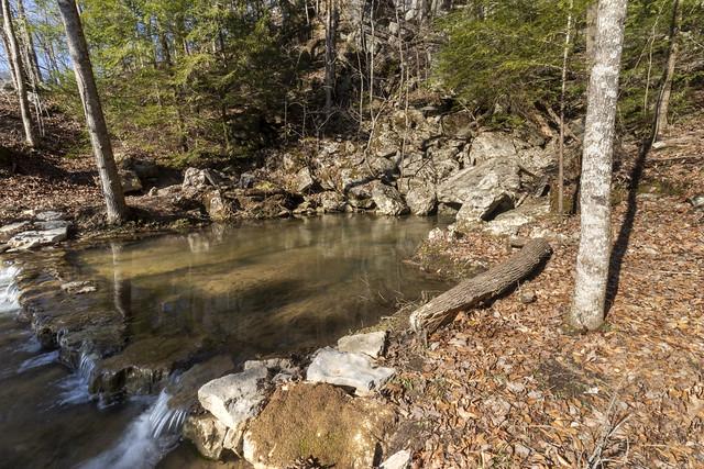 Spring above Sullivan Falls, Van Buren County, Tennessee 2