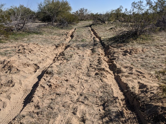 The Track Back to Unstuck IMG_20200112_134159