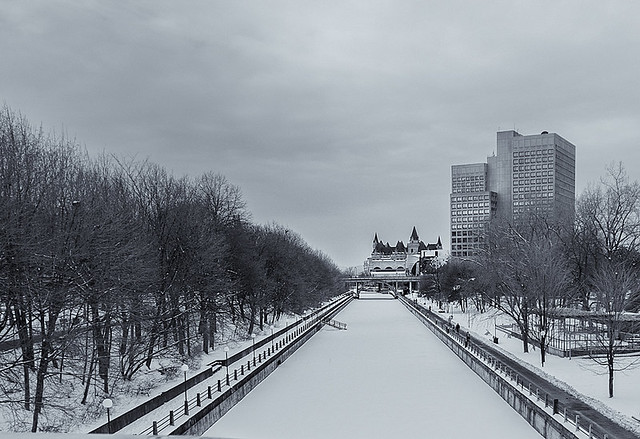 Winterscape 2020  # 21  ... (c)rebfoto