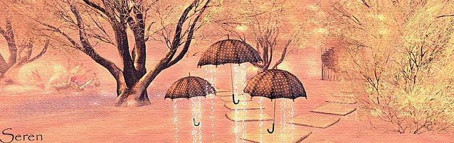 "Umbrellas....""Kindred January Photo challenge"""