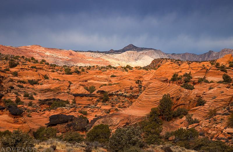Sandstone View