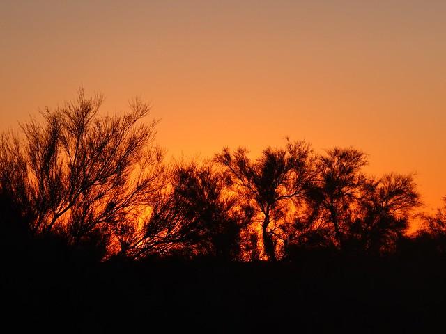 Sunset at Larrys Camp SR602116