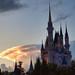 "<p><a href=""https://www.flickr.com/people/fisherbray/"">fisherbray</a> posted a photo:</p>  <p><a href=""https://www.flickr.com/photos/fisherbray/49421474971/"" title=""Cinderella's Castle - Magic Kingdom""><img src=""https://live.staticflickr.com/65535/49421474971_c6d7dc93a6_m.jpg"" width=""240"" height=""171"" alt=""Cinderella's Castle - Magic Kingdom"" /></a></p>  <p>A thunderstorm in the distance behind Cinderella's Castle at Walt Disney World's Magic Kingdom near Orlando, Florida.</p>"
