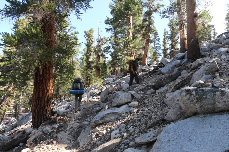 We then started heading east, up some switchbacks and over a ridge on the Big Whitney Meadow Trail