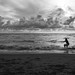 Endless Summer in Florida by jrpopfan