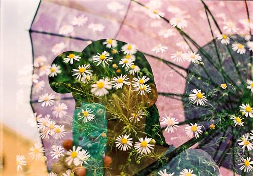 """""""Floral portraiture"""""""