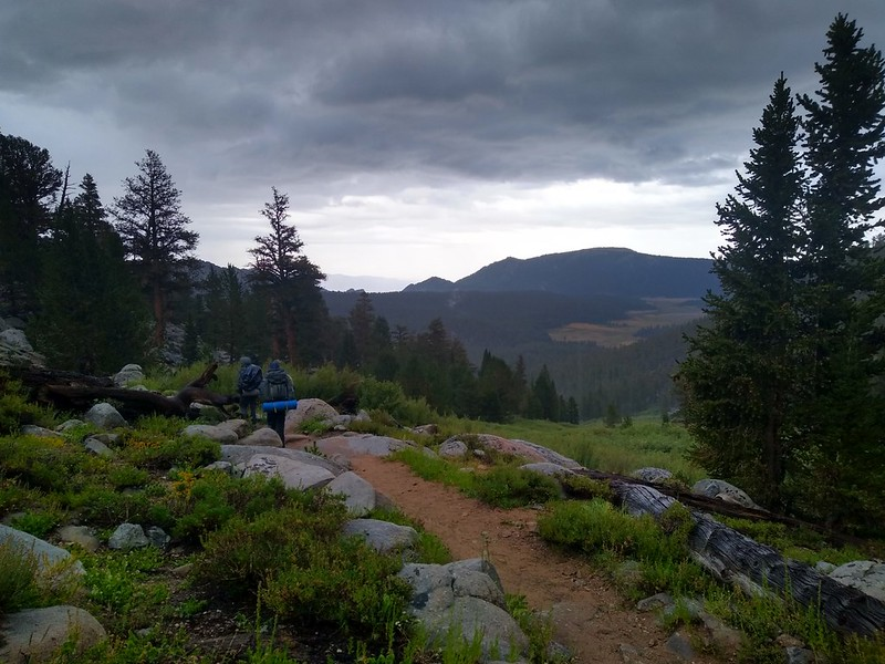 Dark Skies and green plants from the Cottonwood Pass Trail looking down at Horseshoe Meadows