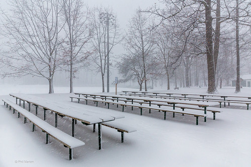 Snow storm in Kew Gardens - Toronto | by Phil Marion (184 million views - THANKS)