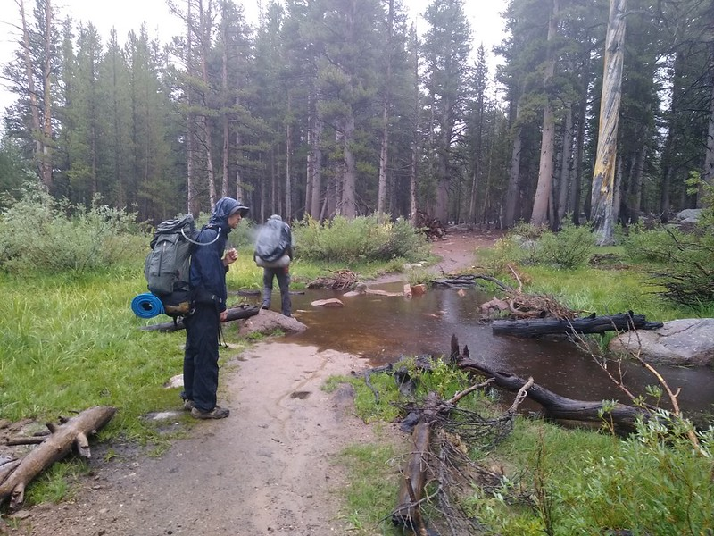 The creek was swollen from the rain but we were able to hop across on the rocks, on the Cottonwood Pass Trail