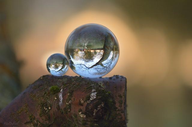 Balancing Balls...