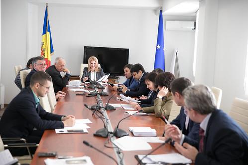 22.01.2020 Şedinţa Comisiei politică externă şi integrare europeană