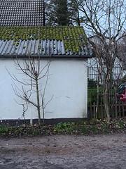 Oberneuland 101C269699-3