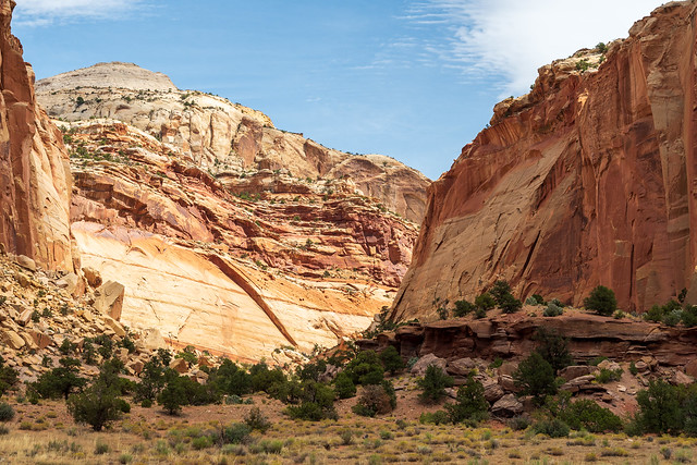 Capitol Reef National Park   |   Capitol Gorge