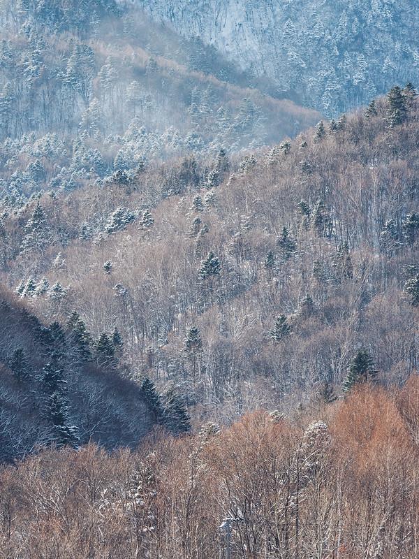 富良野|Furano