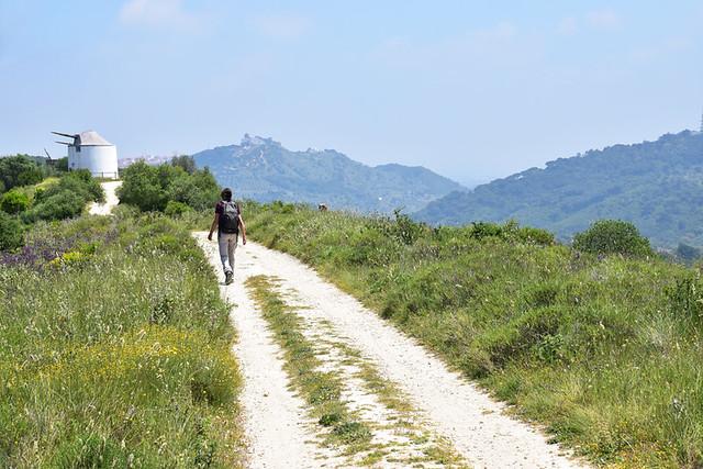 Moinho route, spring, Palmela, Portugal