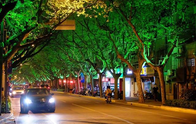 Shanghai - Xinhua Road