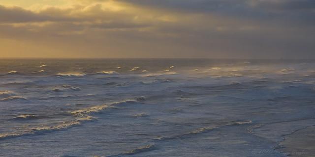 High Surf Warning - EXPLORED #1 1/22/2020
