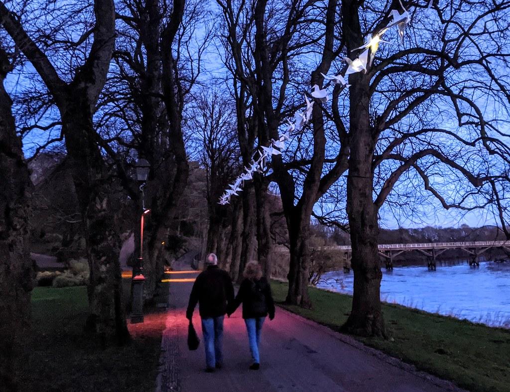 Luminous Birds at Avenham Park, Preston
