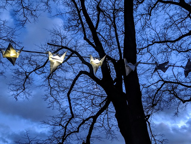 Luminous Birds at Avenham Park, Preston