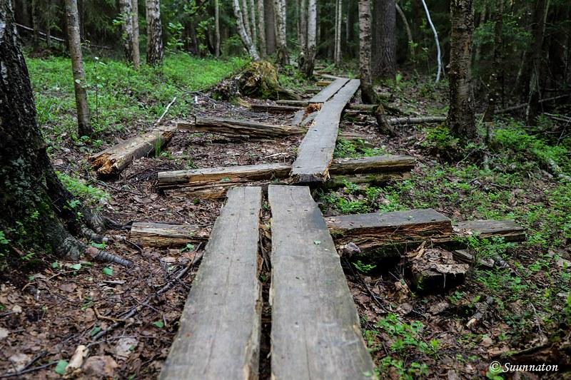 Torronsuon kansallispuisto, pitkospuut