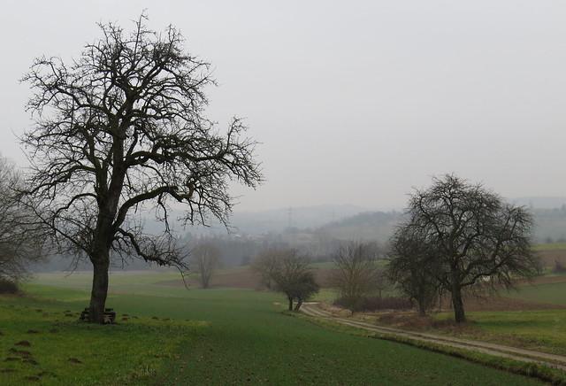 Dietenhausen - kleine Wanderung