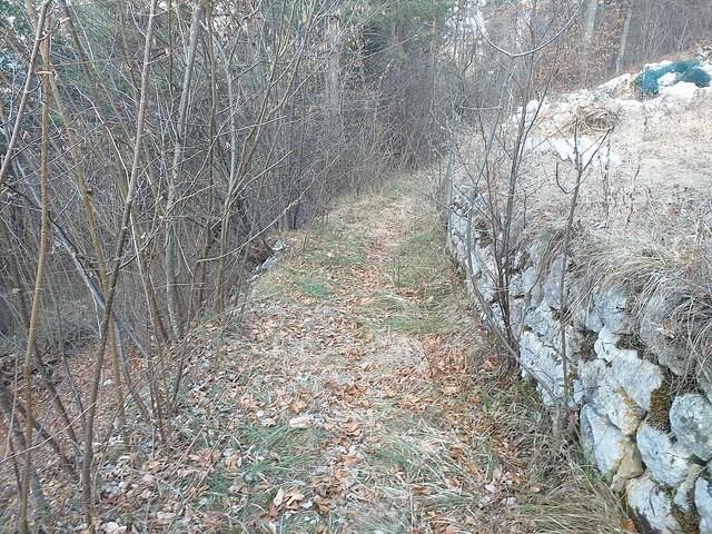sentiero Sottosoglio Scandelli