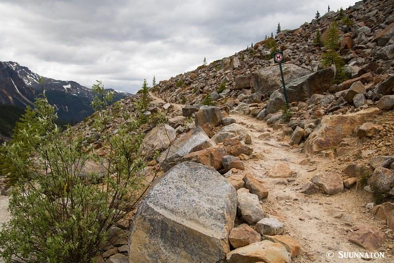 Polku, Mt Edith Cavell, Jasper