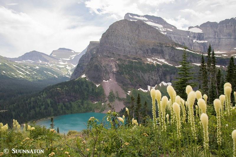 Glacier, Grimmel lake, bloggaajan ensimmäinen vuosi