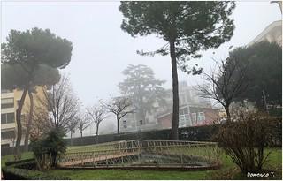 Foschia - Mist
