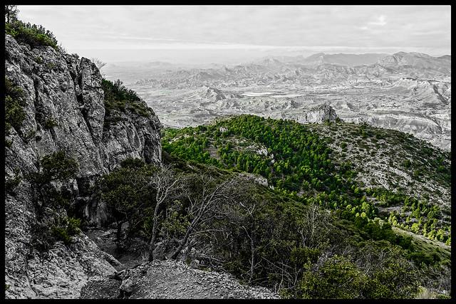 Relieve de Alicante.