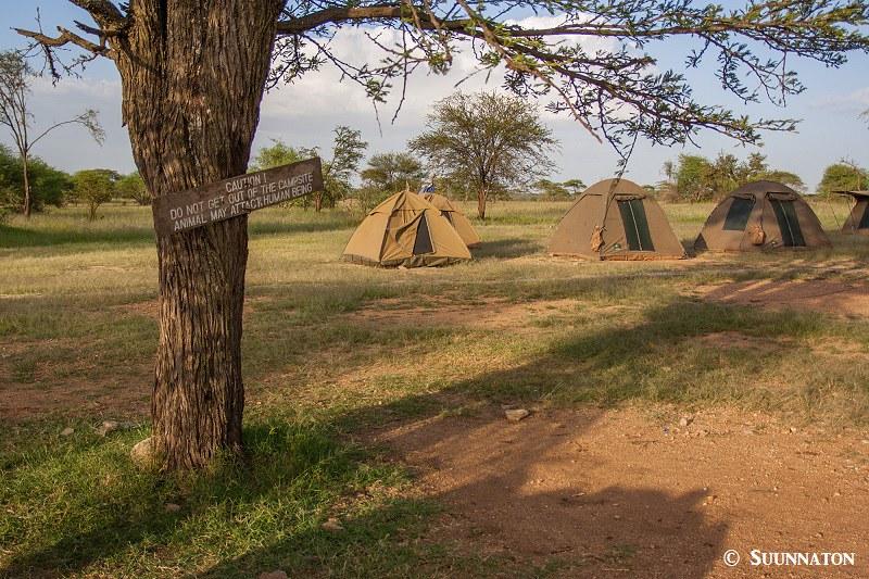 Serengeti, leirintaalue