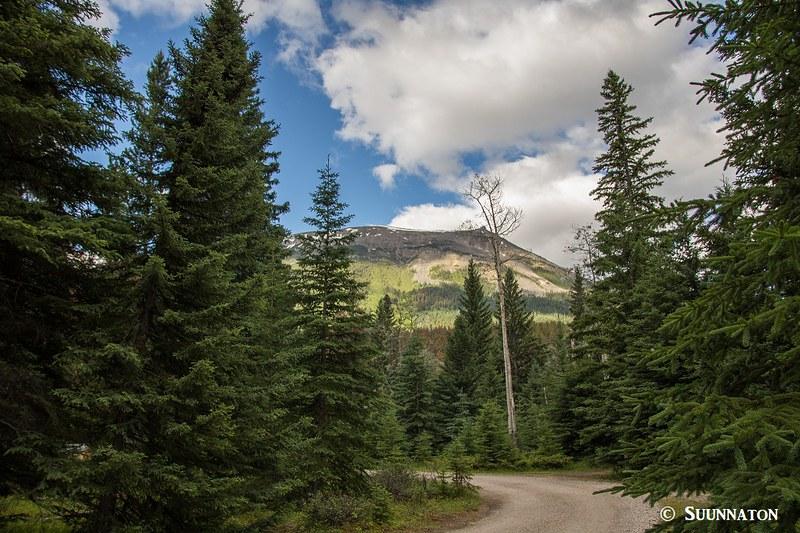 Whistlers Campground, Jasper
