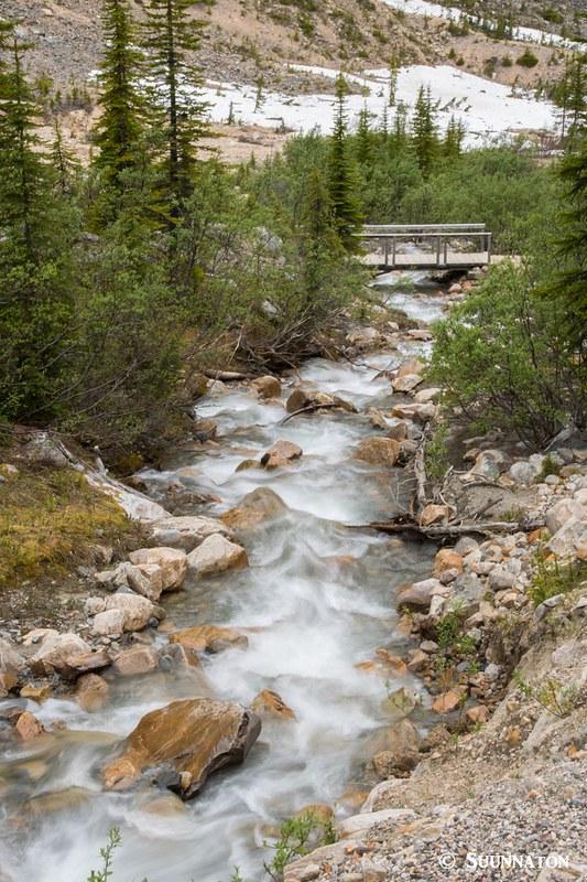 Puro ja silta, Mt Edith Cavell, Jasper