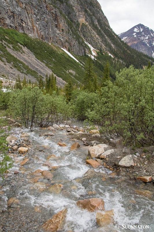 Jäätikköpuro, Mt Edith Cavell, Jasper