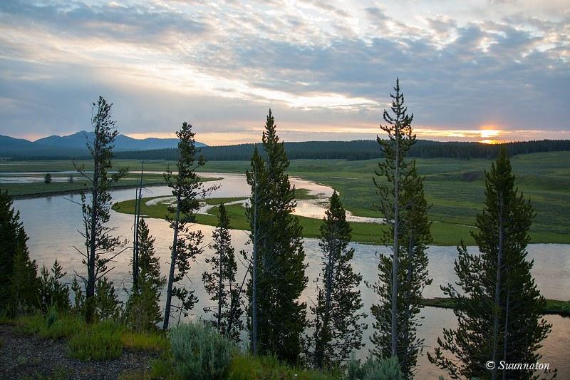 Yellowstone, Hayden Valley aamuhämärässä