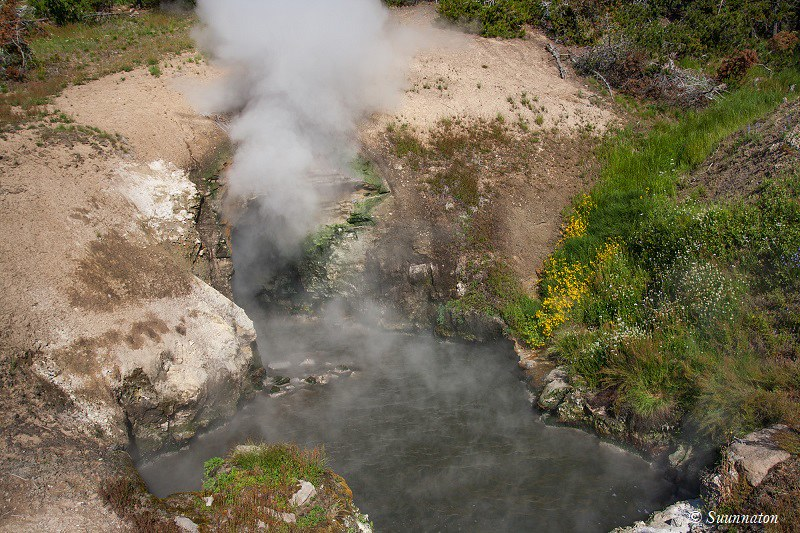 Karhunpentu, Grand Canyon of Yellowstone sekä muita Yellowstonen ihmeitä. Matkablogi Suunnaton.