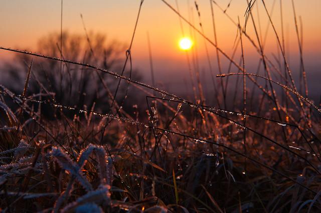 January Sunset.
