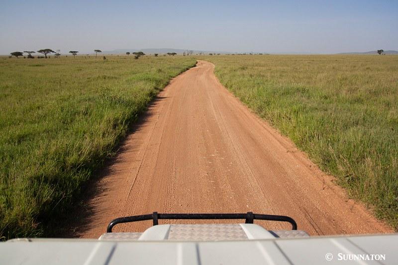 Serengeti, tie