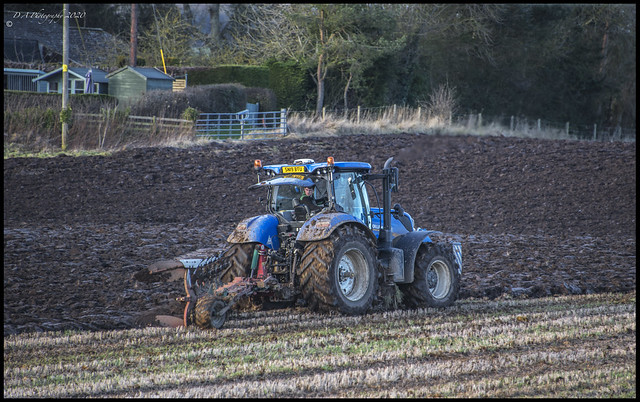 Ploughing the field DSC_4834
