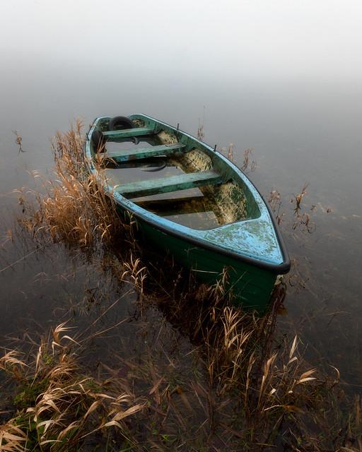 Foggy morning at Lough Owel