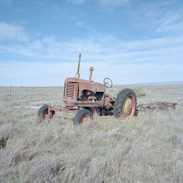 green acres. carrizo plain, ca. 2018.