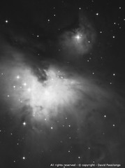 The Orion Nebula (Messier 42)