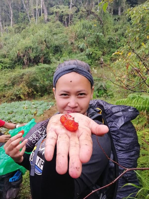 Kapatagan Digos Mount Apo (8)