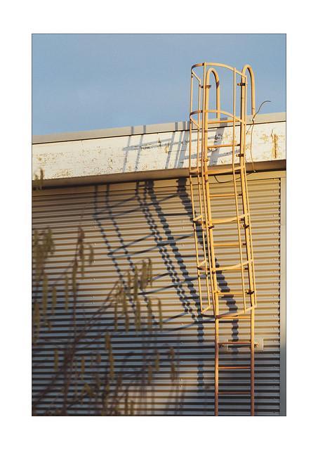 Let the Ladder